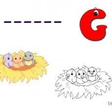g-rebus-gniazdo