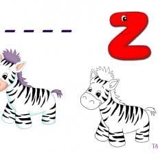 z-rebus-zebra