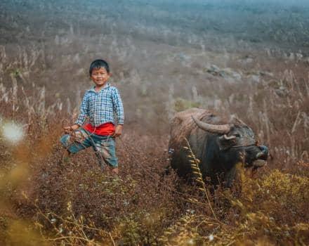 chłopiec na polu