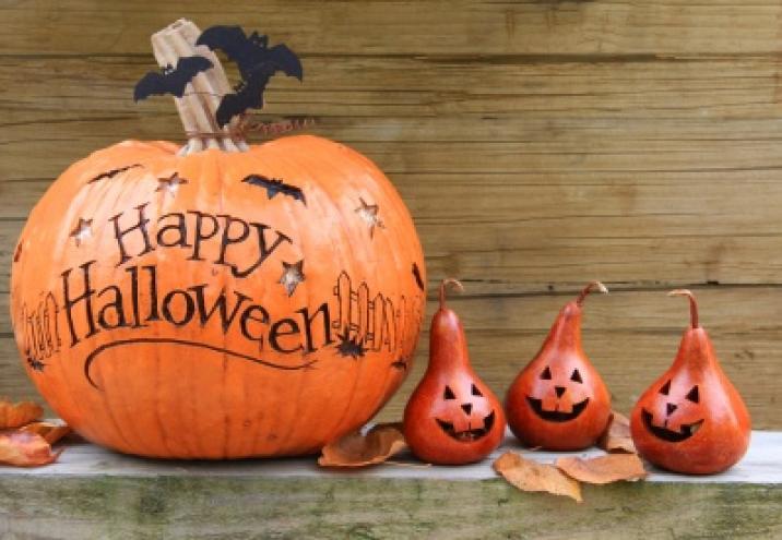 Domowe Halloween Sprawdź Nasze Pomysły